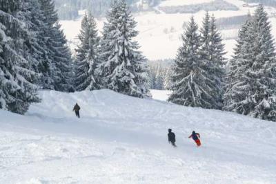 Skifahren Gruenten 13