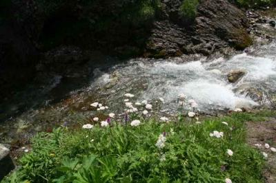 Stuibenfall Oytal und Kaeseralpe 38