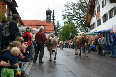 Viescheid Kranzegg 13