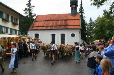 Viescheid Kranzegg 16