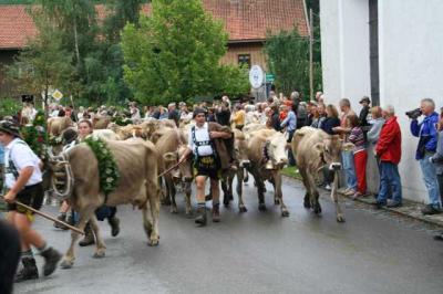 Viescheid Kranzegg 30