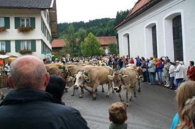 Viescheid Kranzegg 32