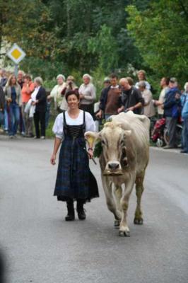 Viescheid Kranzegg 33