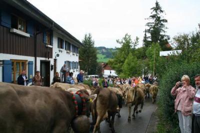 Viescheid Kranzegg 39