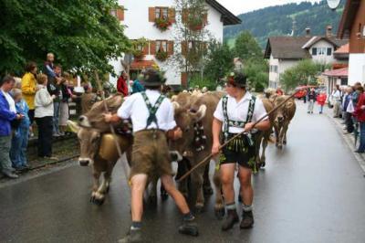Viescheid Kranzegg 9